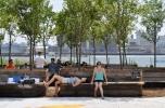"Interboro Partners' Paths to Pier 42 installation ""Tree Grove."""