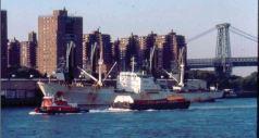 Pier 42 as an active cargo pier